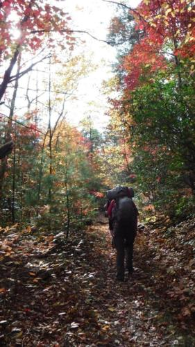 Backpacking along Jack's River in Cohutta Wilderness Area - Oct 2015